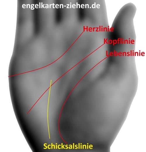 Schicksalslinie kurz Fingerwurzel